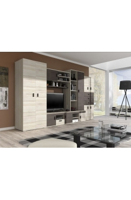 WALL UNIT 'NELLY' ASH AND SILVER OAK